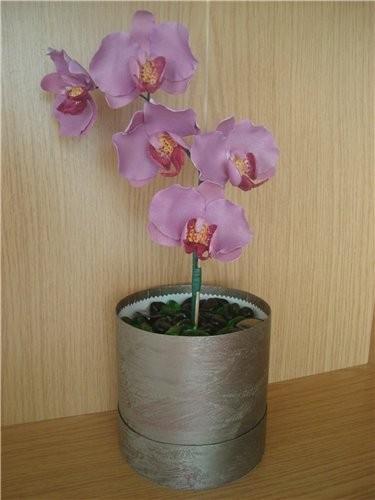 делала орхидеи из желатиновой мастики,низ коробка ,кушать нельзя,это в подарок на день рождение леб...