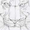 Уроки по рисованию Рисуем коня, урок от Петра урок по ирисам (на анг - 5