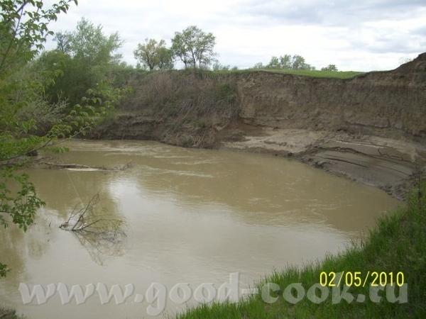 Степная речка, затерявшаяся в песках - 3