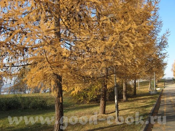 Алисонька осень шикарная - 2