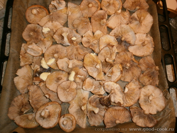 грибы в духовке