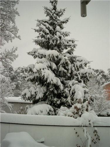 А у нас снега навалило, ужасть - 2