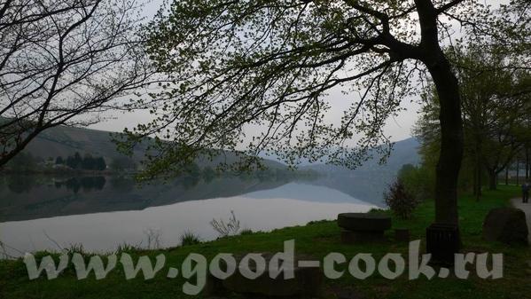 Утро над Мозель: Кохэм, замок на берегу, в утреннем тумане: Замок Эльз, находится немного в стороне...