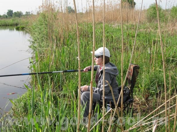 На выходных были на даче, ходили на рыбалку, а вокруг такая красота, что захотелось ею поделиться с... - 5