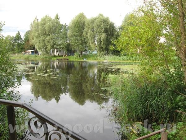 В лес мы едем через городок Логойск, 30 км от Минска - 6