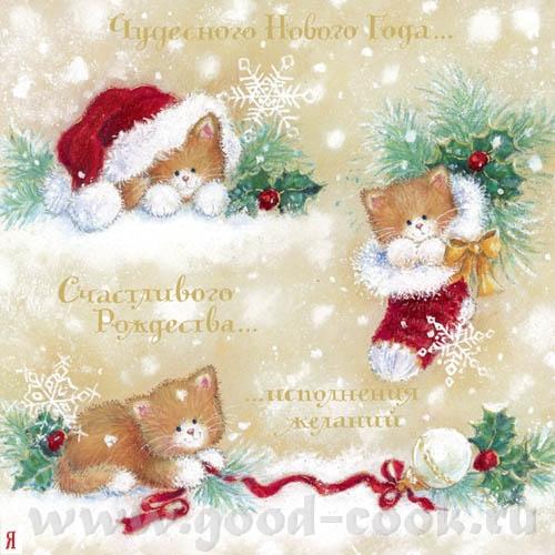 поздравляю Вас и Вашу семью с Новым 2011 годом