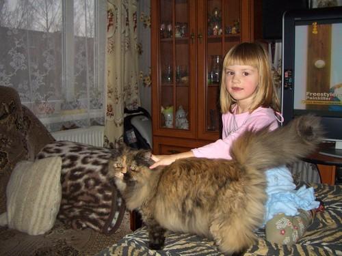 А вот это чудо кошка моих родителей, Доминика или просто Ника )) У нее просто супер хвост, любая ли... - 2