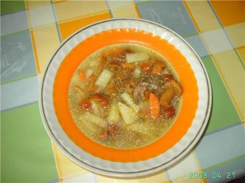 А сегодня варила суп с грибами: Обжарила на выпечке лук, морковку, грибы (опята стерилизованные из...