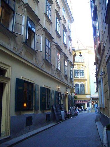 Когда-то я прочитала, что в Вене есть улица SCHONLATERNGASSE (улица Прекрасного фонаря) На ней снял... - 2
