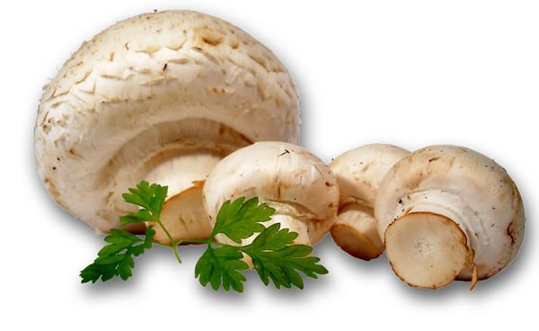 Я тоже сегодня перцы фаршировала - ВМЕСТО РИСА - перемолола грибочки с луком и потушила до почти го...