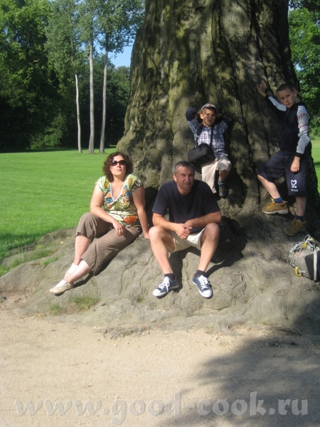 Это мы такое дерево нашли в БадМускау в парке