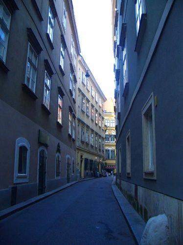 Когда-то я прочитала, что в Вене есть улица SCHONLATERNGASSE (улица Прекрасного фонаря) На ней снял...