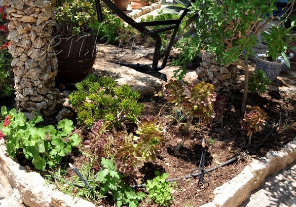 Во дворе церкви находится восхитительный сад , где можно любоваться различными икебанами из камней,... - 5