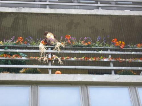 Балкон наших соседей - Хэлловин скоро