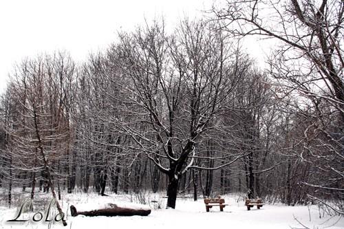В Москве наступила зима