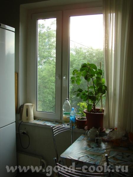 Окно, на подоконнике - чайник