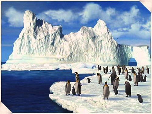 Ну а если нарисовать льда и воду- как Linda Besse Melissa Barrett А может быть что-то из этого по... - 3