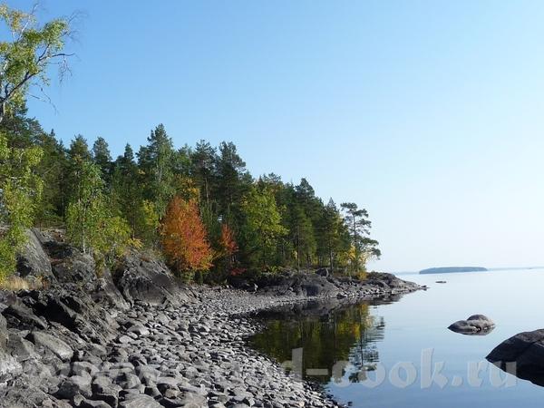 озеро Пиелинен Финляндия озеро Янисярви Карелия Озеро Глубокое Сосновый бор очень прозрачное бухта... - 2