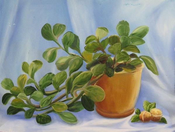 Мои новые картины Фиалка масло 20х30 см Рисовала с натуры Пионы Масло, 35х45 см Этюд с натуры в сту... - 3