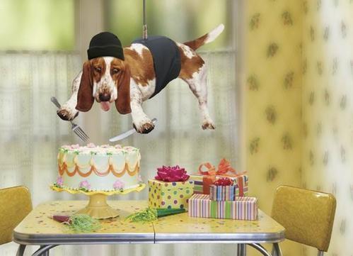С Днем рожденья поздравляем Всяких благ тебе желаем Быть любимой и любить И до сотни лет дожить