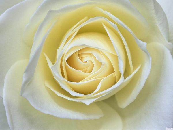 Ето вам красота и всем Ага- красиво, спасибо Ну ничего, можно чуть пожже сделать то что xотите А сс... - 4