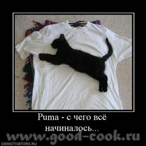 ПОДПИСЬ - ГОТОВ - 2