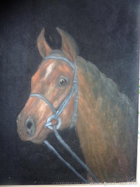 лошадь на черном бархате