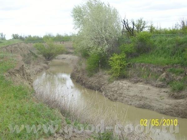 Степная речка, затерявшаяся в песках