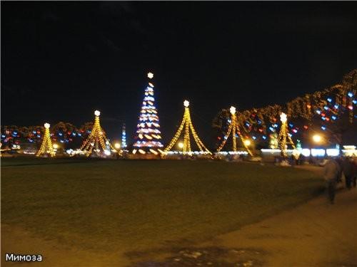 Елка на стрелке Васильевского острова А это сама Биржевая площадь