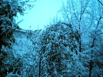 """В Ташкент пришла зима, идет снег, с крыш течет, пацаны предвкушают """"мылить девчонок"""""""