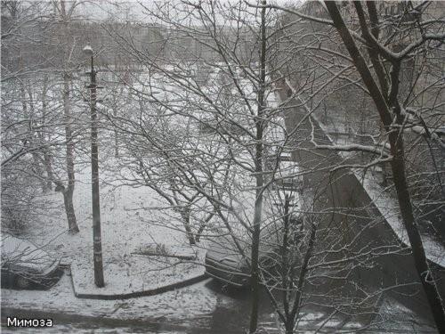 Вчера утром мы проснулись и увидели такую картину за окном - снова началась зима - - 2