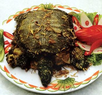 Лечебное мясо мягкотелых черепах «ba ba» (трионикс)