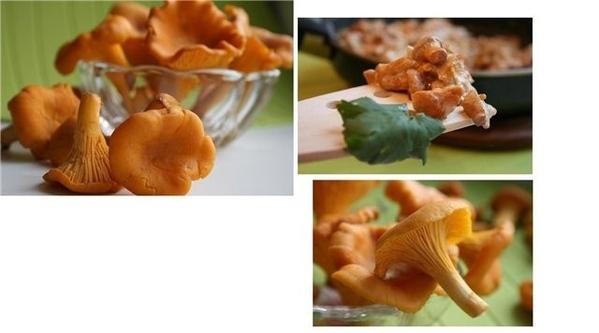 лисички в сливочном соусе обжарить порезанные лук и чеснок на смесе масел оливковое+сливочное,затем...