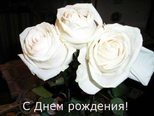 С днем рождения, дорогая, возвращайся