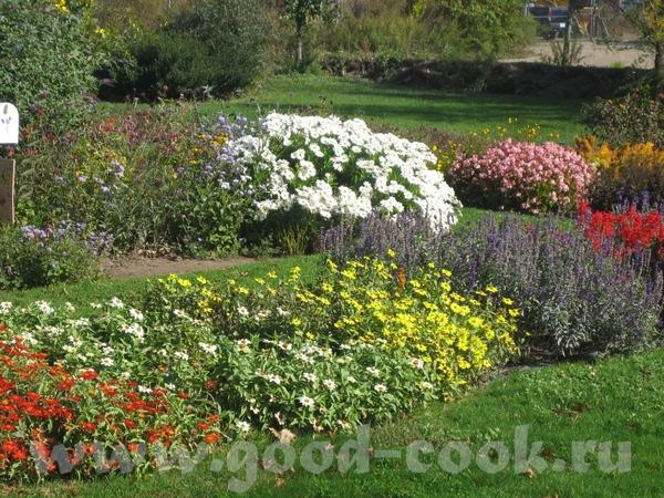 а потом мы набрели на что то типа маленького ботанического сада с красивыми цветами - 6