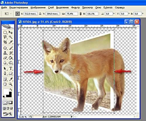 Зажимаем Alt и Shift и подтягиваем как на рисунке Если объект немного не попадает в картинку, его т...