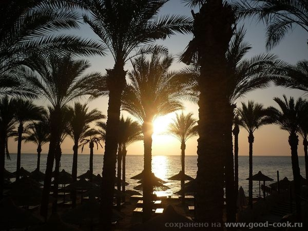 встречали рассветы на пляже отдыхали после ужина на оттоманке в холле в прохладе под журчание водички - 2