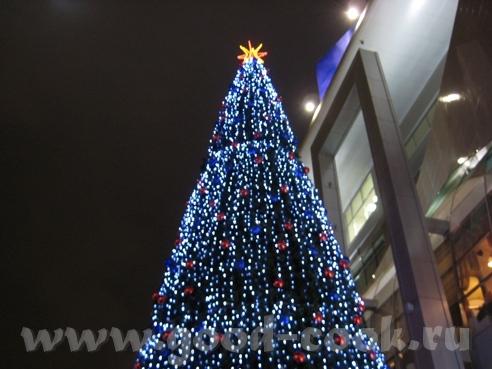 Сегодня у Киевского вокзала украшали новогоднюю ёлку - 2