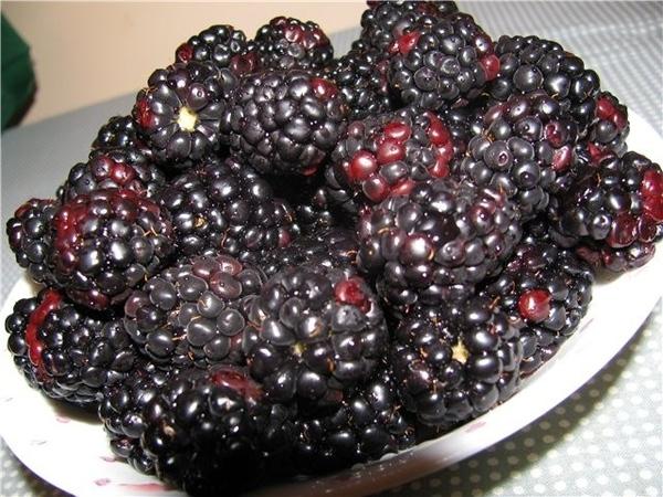Девы, я вам принесла ягодок вку-у-усных, угощайтеся: Blackberry Это был мой обед вчерашний, обожаю...