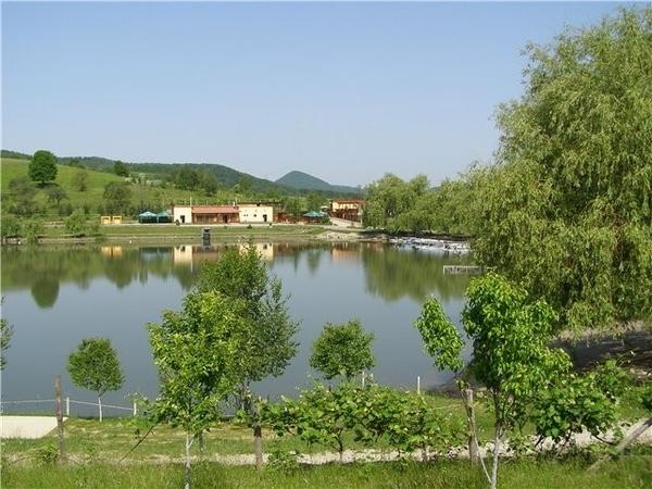 , можем встретиться здесь По совпадению, моя любимая зона отдыха на Закарпатье находиться в Тячевск...