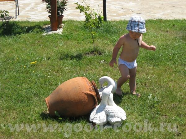 Купались в бассейне, Макс сначала боялся воды, потом привык, но круг был великоват, а в жилете он з... - 6