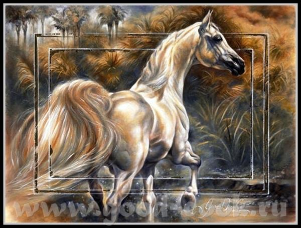 Балетки, батинки, кони - 3