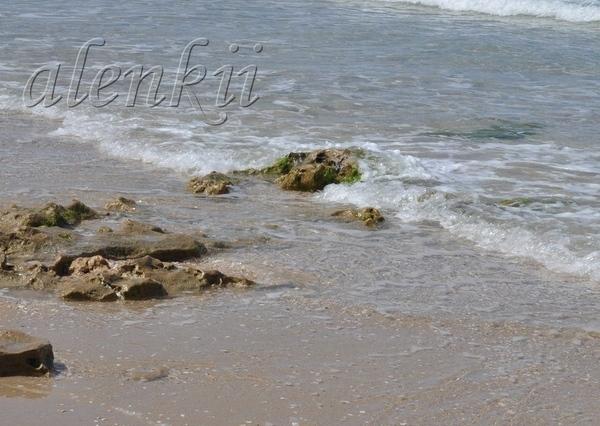 Своё тепло дарит ласковое солнце голубым волнам и золотому песку