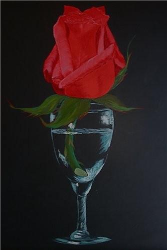 моя первая роза