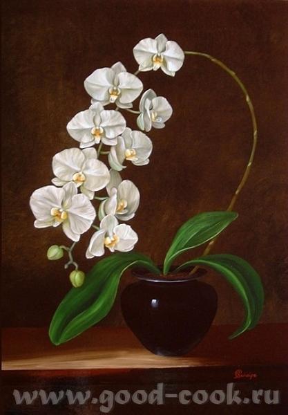 Надюнчик У меня есть такие картины с орхидеями может быть они вам понравится Martin Johnson - 7