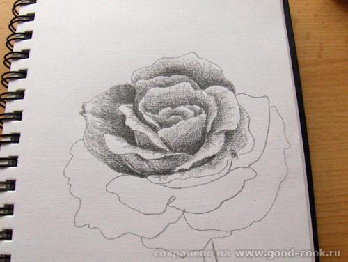 Мне во второй картинке понравилось как мистически прерывается стебель розы и исчезает ножка бокала - 3