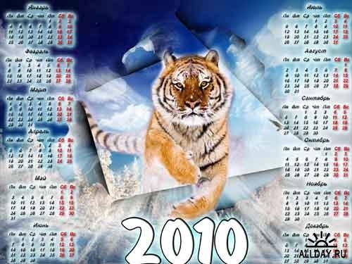 Может кому пригодится для рисунков В основном желтые тигры на календарях к 2010 году, но есть и бел... - 7
