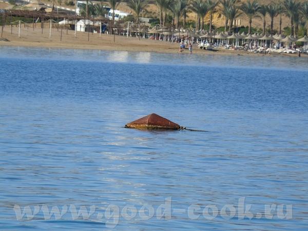 На рождественские каникулы ездили мы в Египет, Sharm el Sheikh - 4