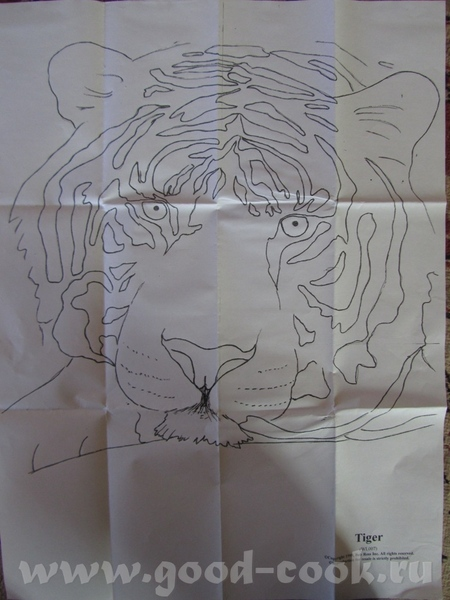 Ягуар с детенышем Тигр 2 (в краске фото ) - 7