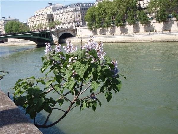 Мой Париж: добрый, чистый, модный - 2
